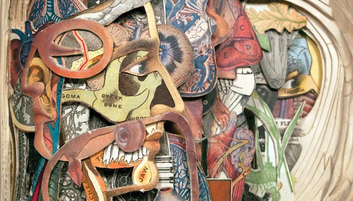 Brian Dettmer iconografia anatomica