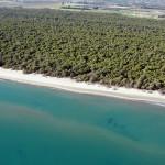 Metaponto spiaggia